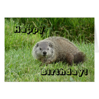 Happy Birthday groundhog Card