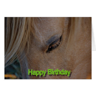 Happy Birthday Horse Birthday mare stallion foal Cards