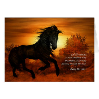 Happy Birthday Horse in the Sunset Greeting Card
