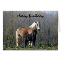 Happy Birthday Horses Card