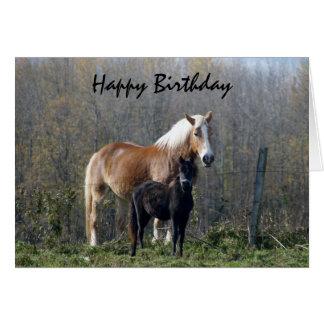 Happy Birthday Horses Card