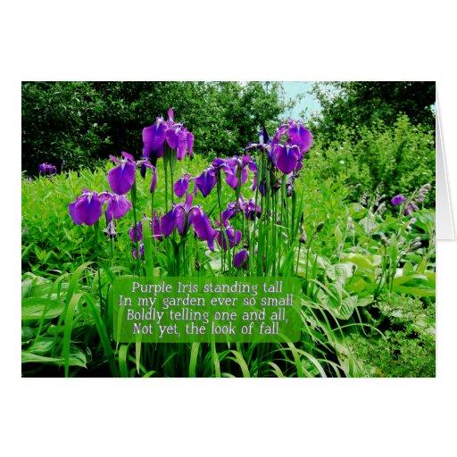 Happy Birthday Iris Garden Greeting Card Zazzle
