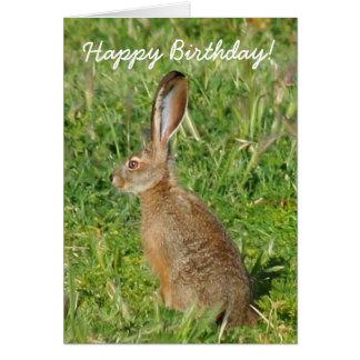 Happy Birthday Jack Rabbit Greeting Card