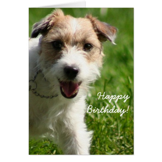 Happy birthday jack russell terrier greeting card zazzle happy birthday jack russell terrier greeting card bookmarktalkfo Image collections