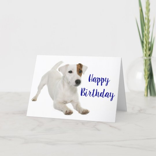 Happy Birthday Jack Russell Terrier Puppy Dog Card Zazzle