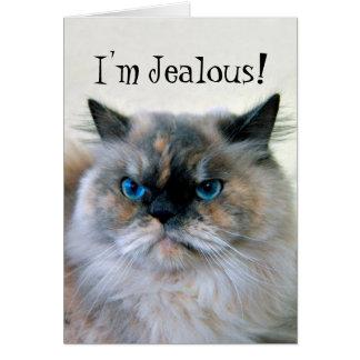 Happy Birthday Jealous Himalayan Persian Cat Humor Card
