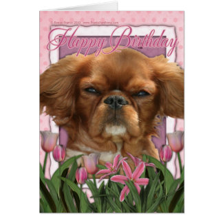 Happy Birthday - King Charles Cavalier - Ruby Greeting Cards