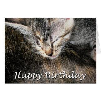 Happy Birthday Kitten and Cat Card