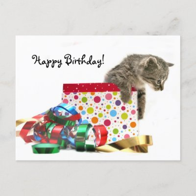 My birthday is on November 6th! Happy_birthday_kitten_postcard-p239118991754467092envli_400