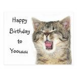 Happy Birthday kitten Postcard