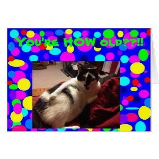 Happy Birthday Kitty Card