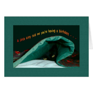 Happy Birthday Kitty Under Covers Told Me Card