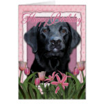 Happy Birthday - Labrador - Black - Gage Greeting Card