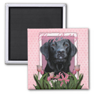 Happy Birthday - Labrador - Black - Gage Magnet