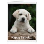 Happy Birthday Labrador Retriever Puppy Card