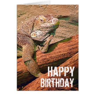 Happy Birthday  - Lazy Lounge Lizard Chillaxing Cards