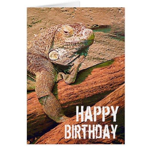 Reptile Lizard Birthday Cake Ideas And Designs