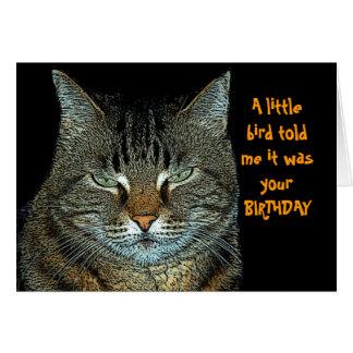 Happy Birthday little bird Card
