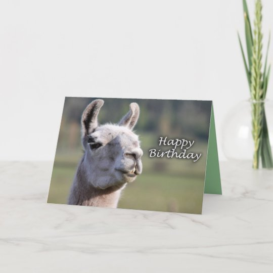 Happy Birthday llama | llama happy birthday Card | Zazzle.com