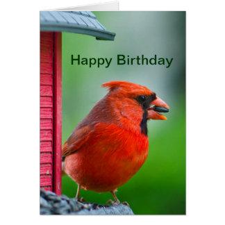 Happy Birthday - male cardinal Card