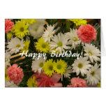Happy Birthday! Margueruite Daisies Greeting Card