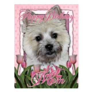 Happy Birthday Mom - Cairn - Light - Teddy Bear Postcard