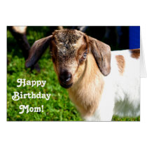 Happy Birthday Mom from Favorite Kid (with Goat) Card