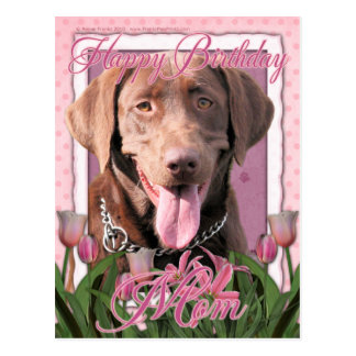 Happy Birthday Mom - Labrador - Chocolate Postcard