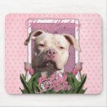 Happy Birthday Mom - Pitbull - Jersey Girl Mouse Pad