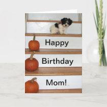 Happy Birthday Mom - puppy and pumkin Havanese Card