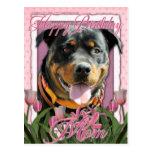 Happy Birthday Mom - Rottweiler - SambaParTi Postcards