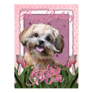 Happy Birthday Mom - ShihPoo - Maggie Postcard