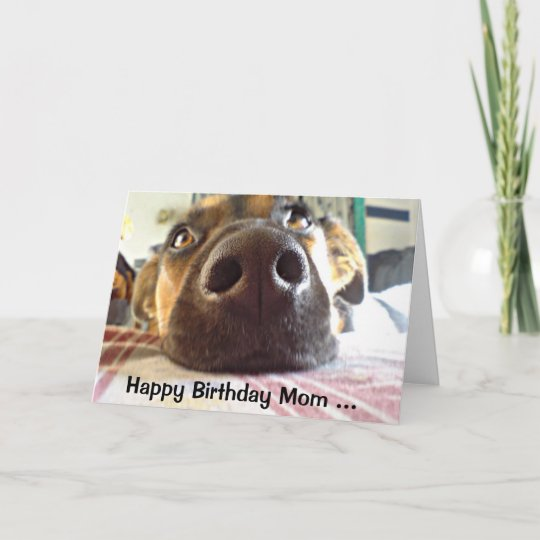 Happy Birthday Mom The One I Look Up To Cute Dog Card