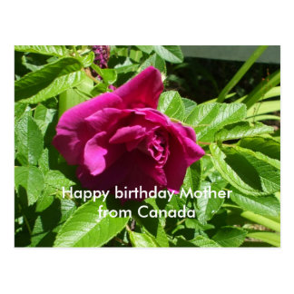 Happy birthday Mother from Canada Postcard