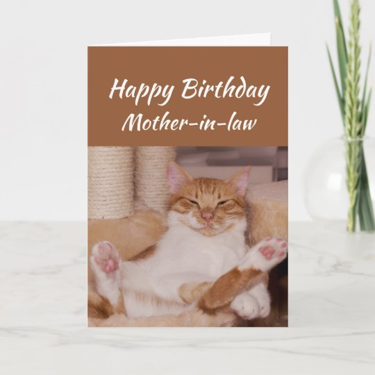 Happy birthday mother in law celebrate funny cat card zazzle happy birthday mother in law celebrate funny cat card m4hsunfo