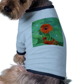 Happy Birthday Nasturtium Bee Pet Tshirt