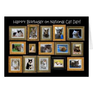 Happy Birthday, National Cat Day Card