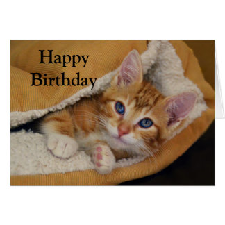 Happy Birthday, Orange Tabby Kitten in Bed Card