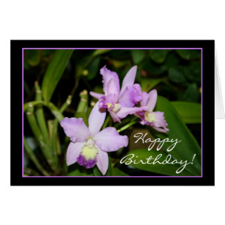 Happy Birthday Orchids greeting card