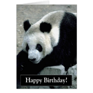 Happy Birthday Panda Bear Card