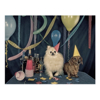 Happy Birthday Party with Dogs and Drinks Postcard