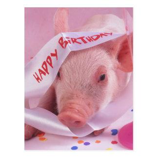 Happy birthday pig postcard