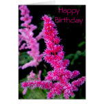 Happy Birthday - Pink Flowers Card