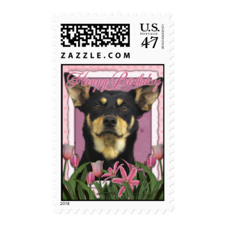 Happy Birthday - Pink Tulips - Australian Kelpie Postage