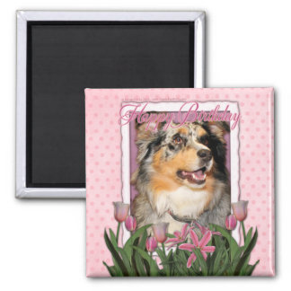 Happy Birthday - Pink Tulips - Australian Shepherd Magnets