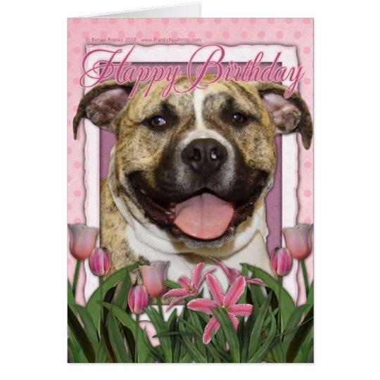 Happy Birthday - Pitbull - Tigger Card