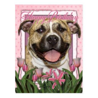 Happy Birthday - Pitbull - Tigger Postcard