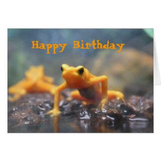 Happy Birthday Poison Dart Frog Card
