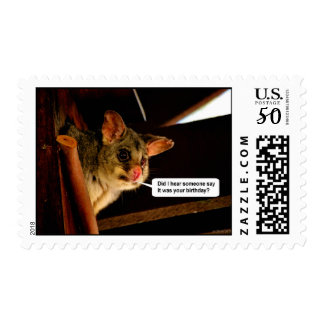 Happy Birthday Possum cute Birthday card Opossum Postage