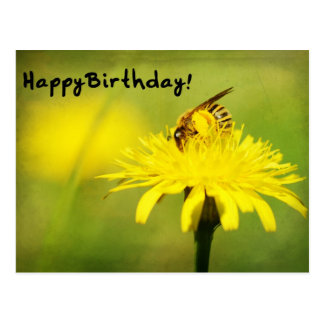 Happy Birthday! Post Card